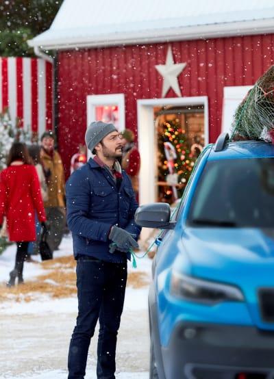 Aidan Ties Down the Christmas Tree