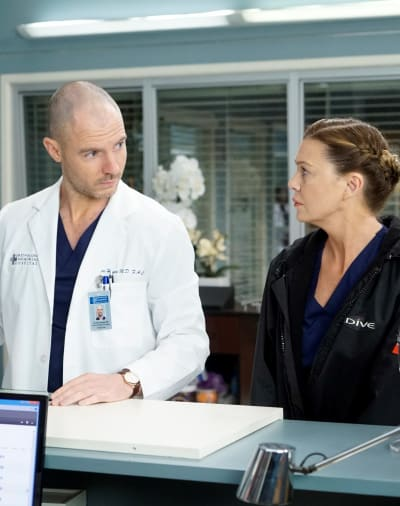 Cristina's Gift - Tall  - Grey's Anatomy Season 16 Episode 10