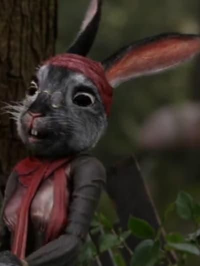 Mrs. Rabbit oUATIW