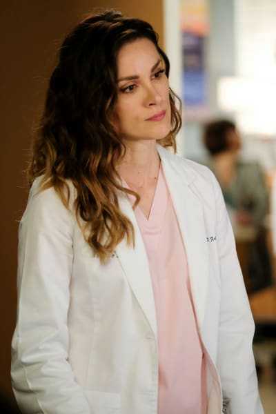 Protective Sister  - Grey's Anatomy Season 16 Episode 15