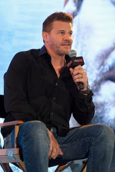 David Boreanaz at NYCC