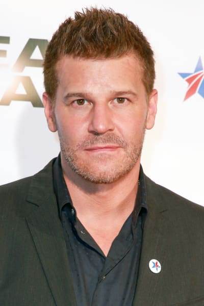 David Boreanaz Promotes SEAL Team