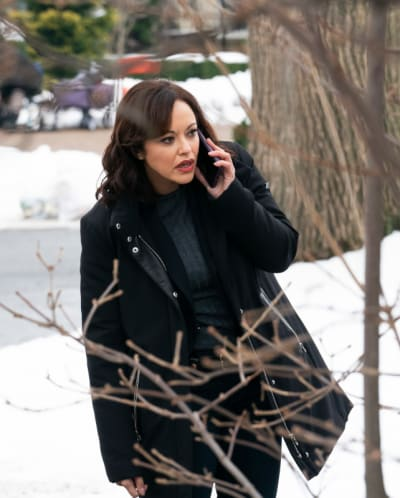 Searching for a Killer - Blue Bloods Season 11 Episode 8