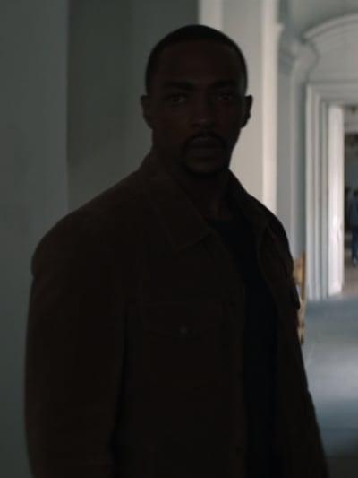 Sam - The Falcon and The Winter Soldier Season 1 Episode 4