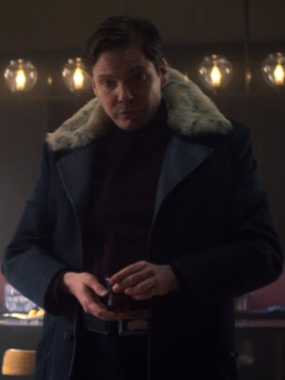 Zemo - The Falcon and The Winter Soldier Season 1 Episode 4